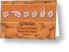 Give Thanks Spanish Greeting Card