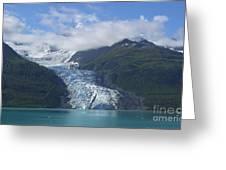 Glacier Bay Afternoon Greeting Card