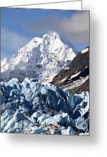 Glacier Bay Alaska Photograph Greeting Card