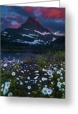 Glacier National Park At Dawn Greeting Card