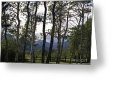 Glacier National Park Green Trees Mountains Greeting Card