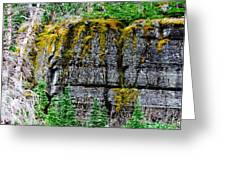 Glacier Np Moss Greeting Card