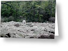 Glacier Rock 2 Greeting Card