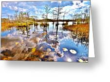 Glades Reflective 1 Greeting Card