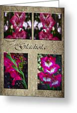 Gladiola Collage Greeting Card