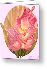 Gladiolas Oval Greeting Card