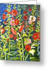 Gladiolus, 11x14, Oil, '07 Greeting Card