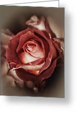 Glamorous Rose Greeting Card
