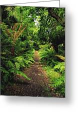 Glanleam, Co Kerry, Ireland Pathway Greeting Card