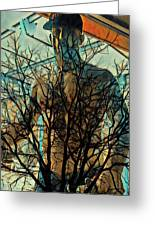 Glass And Branches  Greeting Card