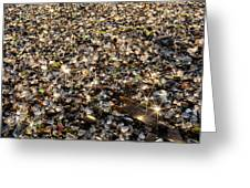 Glass Beach Greeting Card