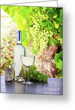 White Wine In Vineyard Greeting Card