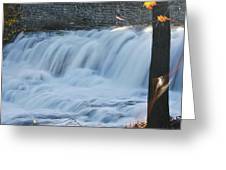 Glen Falls 8956a Greeting Card