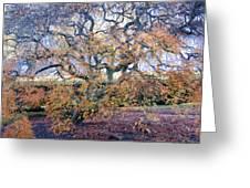Glen Park Manor Garden Greeting Card
