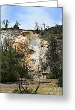 Glen Spring At Mammoth Hot Springs Upper Terraces Greeting Card