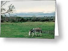 Glenbeigh Ireland Greeting Card