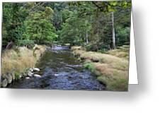 Glendasan River. Greeting Card