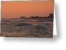 Gliding The Beach Greeting Card