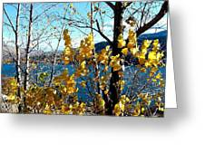 Glimpse Of Kalamalka Lake Greeting Card