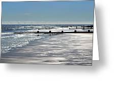Glistening Shore Greeting Card