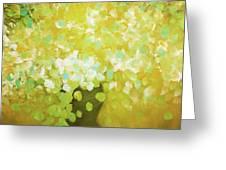 Glorious Flowers Greeting Card