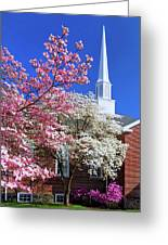 Glorious Sunday Morning In Spring Greeting Card
