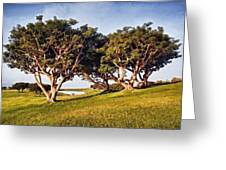 Glory In The Morning Pntb Greeting Card