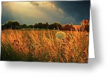 Glowing Grass Greeting Card