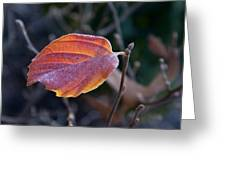 Glowing Leaf Greeting Card