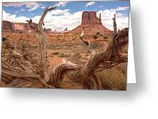 Gnarled Tree At Monument Valley  Greeting Card