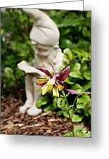 Gnome And Columbine Greeting Card
