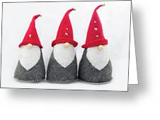 Gnomes Greeting Card