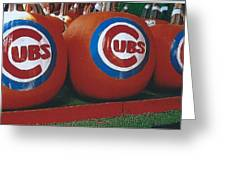 Go Cubs Chicago Celebrates Greeting Card
