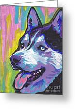 Go Husky Greeting Card
