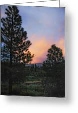 Go Softly Into The Night Greeting Card