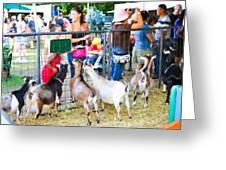 Goats At County Fair Greeting Card