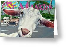 Goats Of St. Maarten- Sofie Greeting Card