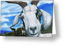 Goats Of St. Martin Greeting Card