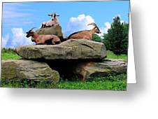 Goats On The Rock Greeting Card