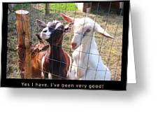 Goats Poster Greeting Card