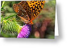 Gods Creation-18 Greeting Card
