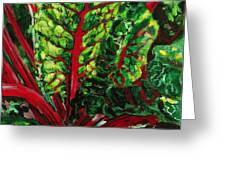 God's Kitchen Series No 7 Swiss Chard Greeting Card