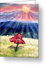 God's Ray's Shining On A Red Lily Flower In The Spring Greeting Card