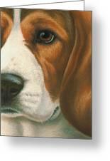 Goggie Beagle Greeting Card