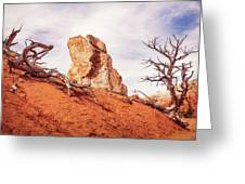 Going Down The Slope At Kodachrome Basin State Park. Greeting Card