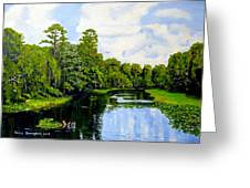 Going Down The St John's River Greeting Card