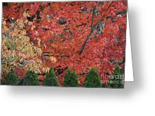 Going Jagged Green Greeting Card