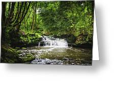 Goitstock Woods Falls Greeting Card