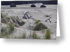 Gold Beach Oregon Beach Grass 18 Greeting Card