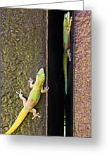 Gold Dusted Day Gecko Greeting Card